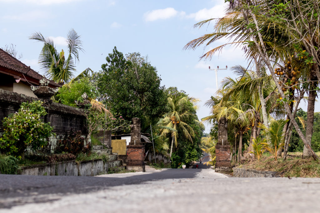 Balinese street on the West of island. Bali. Indonesia.